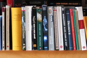 Boelmann_Literarisches_Verstehen_mit_digitalen_Spielen_Symbolbild-1